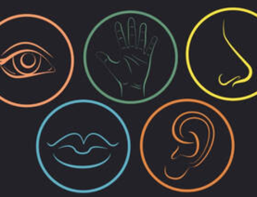 I cinque sensi che avvicinano il cliente